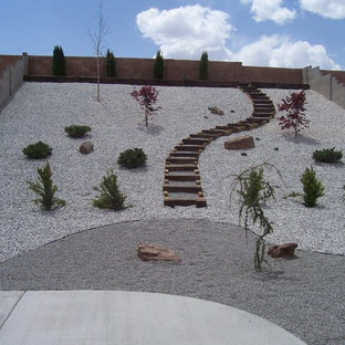 75 Beautiful Traditional Desert Landscaping Pictures Ideas Houzz