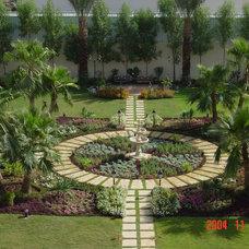 Tropical Landscape landscape