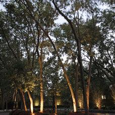 Traditional Landscape by McKay Landscape Lighting