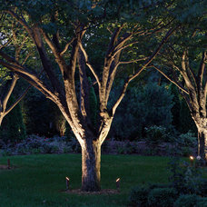Landscape by McKay Landscape Lighting