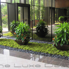 Modern Landscape by The Luxe Designer