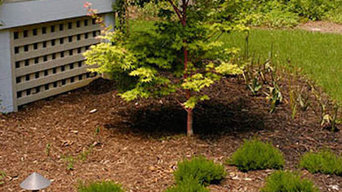 Best 15 Landscape Contractors In Outer Banks Nc Houzz