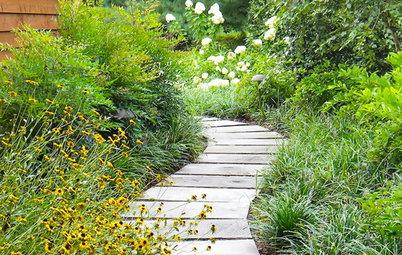 Фотоохота: 93 садовые дорожки мечты