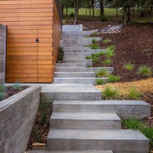 Monterey Terrace Landscape Stairs