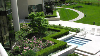 Landscape with Limestone Pool Spa and Luxurious Walkway