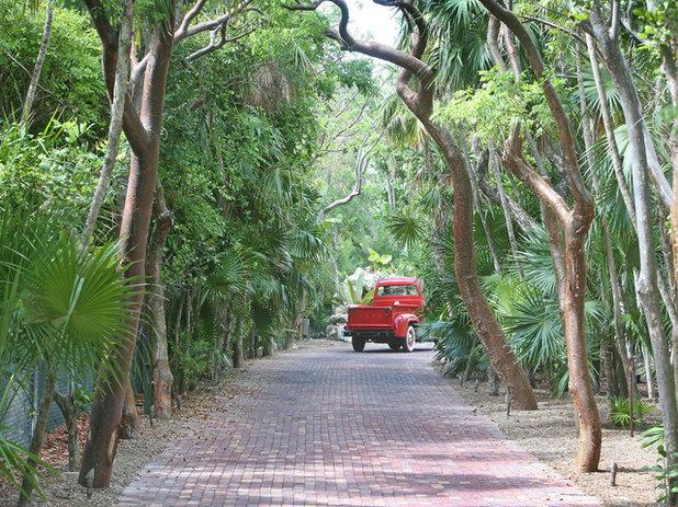 Tropical Landscape by D'Asign Source