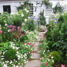 So Your Garden Style Is: Cottage