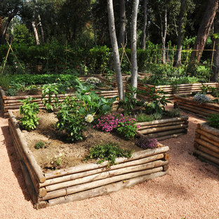 This is an example of a huge contemporary partial sun hillside gravel vegetable garden landscape in Florence for spring.
