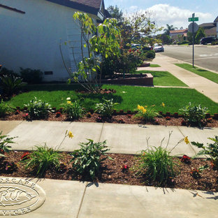 This is an example of a tropical landscaping in Orange County.