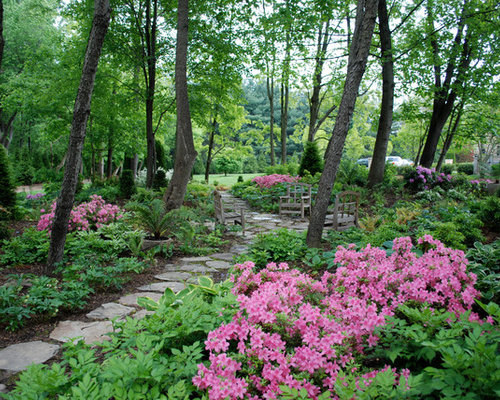 Wooded area home design ideas pictures remodel and decor for Landscaping ideas for wooded areas