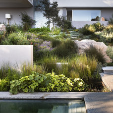 Landscape landscaping photos