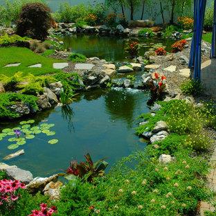 Large Pond Houzz