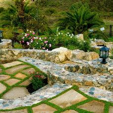 Mediterranean Landscape by DeMaria Landtech Inc