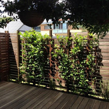 Landscaping and Laser cut screens