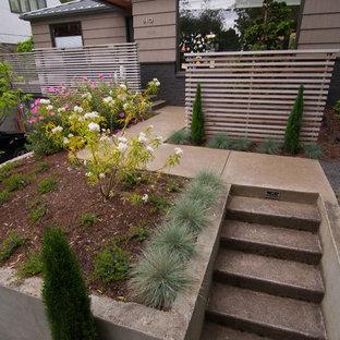 Exemple d'un petit jardin à la française avant rétro l'hiver avec une entrée ou une allée de jardin, une exposition partiellement ombragée et des pavés en béton.