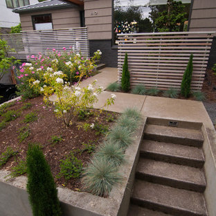 Inspiration for a small mid-century modern partial sun front yard concrete paver landscaping in Portland for winter.