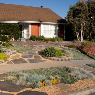 Inspiration for a contemporary drought-tolerant front yard landscaping in Los Angeles.