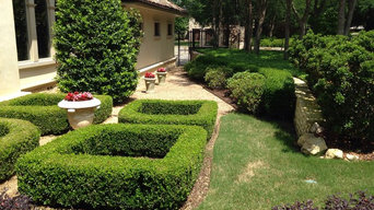 Lawn Care & Maintenance