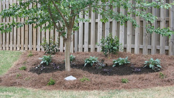 Lawn Maintenance and Installation
