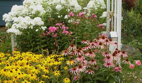 Der Garten im September – was jetzt zu tun ist