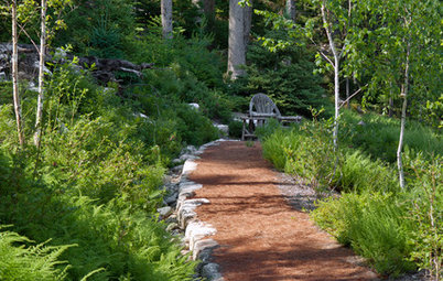 5 Things to Know About Weeding and Mulching Your Native Garden