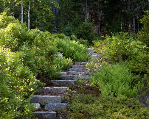 Sunny Hillside Plants | Houzz