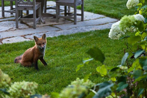 Rustic Garden by Matthew Cunningham Landscape Design LLC