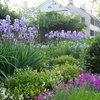 Всесезонный сад: Основные правила создания