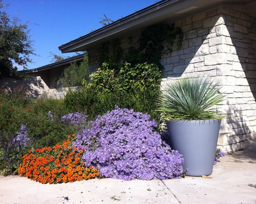 Perennial Plants Zone 4 Home Design Ideas, Pictures ...