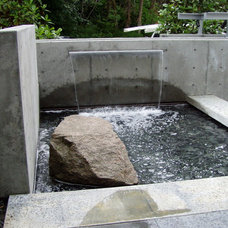 Contemporary Landscape by Aqualine Pool and Spa