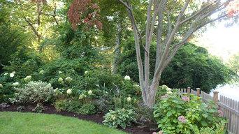 Less Lawn More Garden