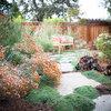 California Gardener's October Checklist