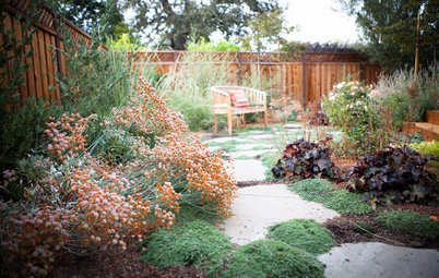 California Gardener's October Checklist