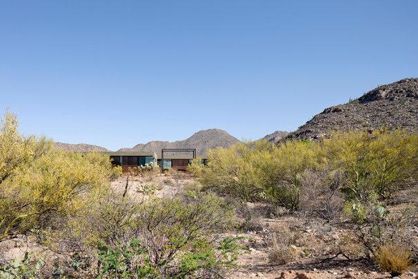 Modern Landscape by Ibarra Rosano Design Architects