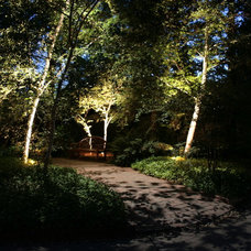 Traditional Landscape by Viewpoint Lighting