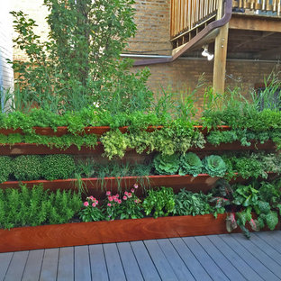 Inspiration For A Small Contemporary Full Sun Rooftop Vegetable Garden Landscape In Chicago