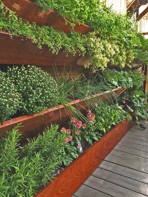 Jardin sur toit contemporain photos et id es d co de - Idee deco jardin contemporain ...