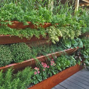 Foto di un piccolo orto in giardino contemporaneo esposto in pieno sole sul tetto