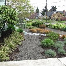 Modern Landscape by Garden Aesthetics