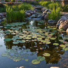 Eclectic Landscape by Grant and Power Landscaping