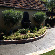 Traditional Landscape by Chris Merenda-Axtell Interior Design