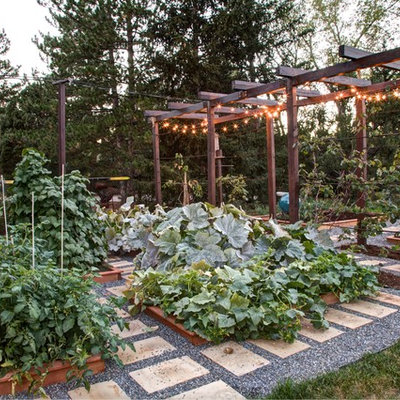 This is an example of a traditional vegetable garden landscape in Denver.
