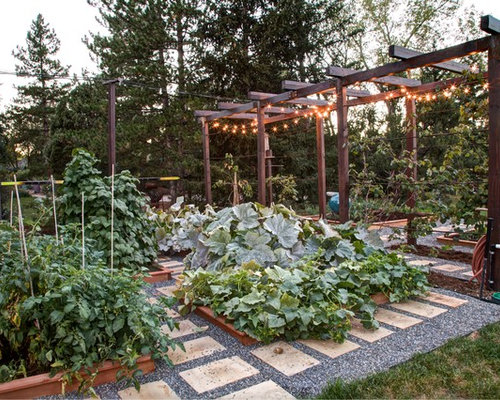 Backyard Vegetable Garden Ideas best 25 home vegetable garden design ideas on pinterest home vegetable garden vege garden design and vegetable planting guide This Is An Example Of A Traditional Landscape In Denver With A Vegetable Garden