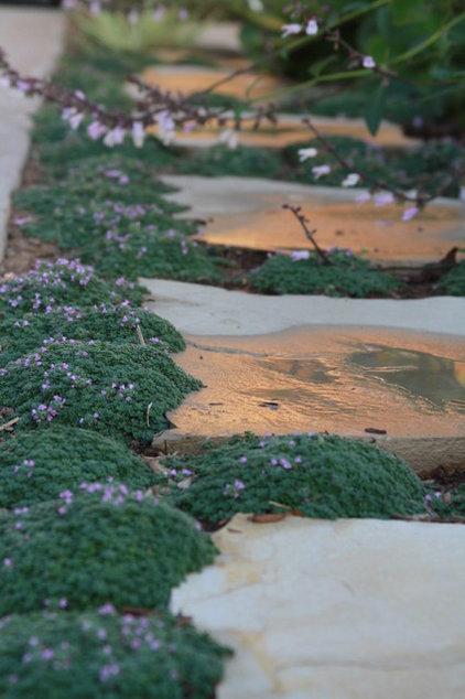 beach style landscape by Living Gardens Landscape Design