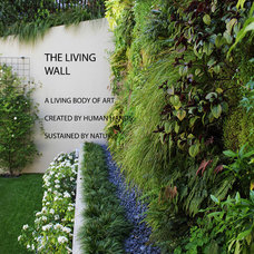 Contemporary Landscape by Michelle Bond, Thumbellina Gardens Inc