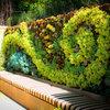 Guida Houzz: Come Realizzare un Giardino Verticale in 7 Punti
