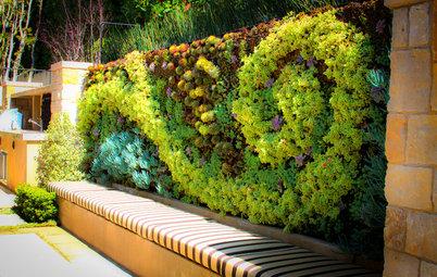 Come trasformare un terrazzo in un 39 oasi relax anche per le piante - Come realizzare un giardino verticale ...