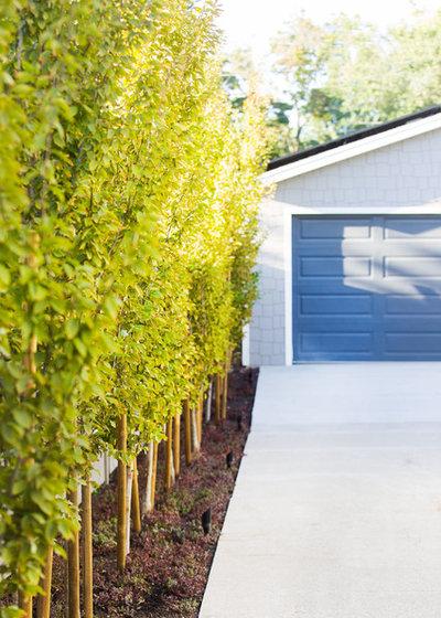 Transitional Garden by Landform Design Group