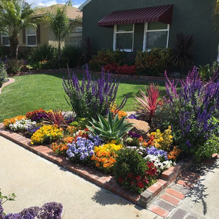 Long Beach Drought Tolerant Landscape