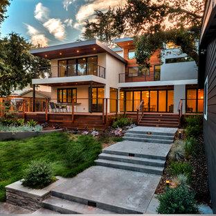 Inspiration For A Contemporary Partial Sun Backyard Landscaping In San Francisco